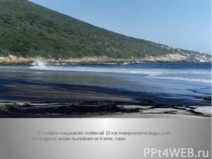 1 т нефти покрывает плёнкой 12 км поверхности воды, а её ежегодно в океан вылива