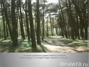 «Первое срубленное дерево явилось началом цивилизации, а последнее будет означат
