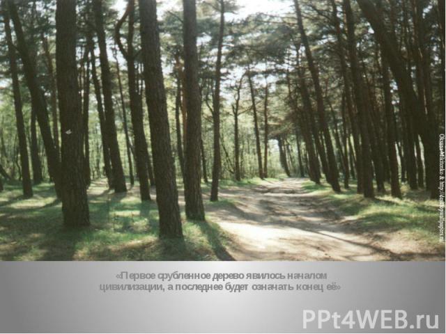 «Первое срубленное дерево явилось началом цивилизации, а последнее будет означать конец её»