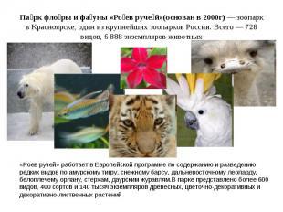 Па рк фло ры и фа уны «Ро ев руче й»(основан в 2000г)— зоопарк в Красноярске, о