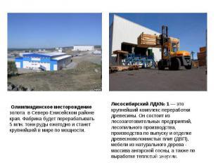 Олимпиадинское месторождение золота вСеверо-Енисейском районе края. Фабрика бу