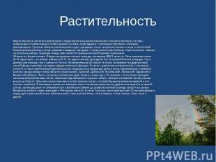 Растительность Растительностьобласти разнообразна и представлена широколиственн