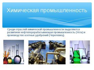 Среди отраслей химической промышленности выделяются развитием нефтеперерабатываю
