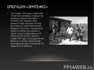 3 и 4 ноября 1943 года на территории лагеря была проведена операция под кодовым