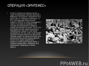 Утром 3 ноября всех евреев лагеря, а также близлежащих лагерей пригнали в Майдан