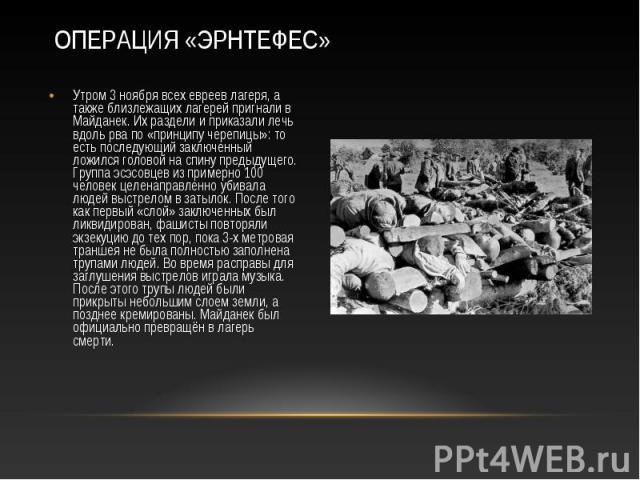 Утром 3 ноября всех евреев лагеря, а также близлежащих лагерей пригнали в Майданек. Их раздели и приказали лечь вдоль рва по «принципу черепицы»: то есть последующий заключенный ложился головой на спину предыдущего. Группа эсэсовцев из примерно 100 …