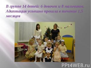 В группе 14 детей: 6 девочек и 8 мальчиков. Адаптация успешно прошла в течение 1