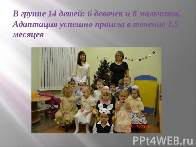 В группе 14 детей: 6 девочек и 8 мальчиков. Адаптация успешно прошла в течение 1,5 месяцев