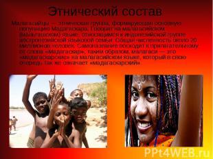 Малагасийцы— этническая группа, формирующая основную популяцию Мадагаскара