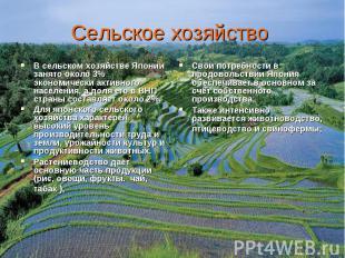 В сельском хозяйстве Японии занято около 3% экономически активного населения, а