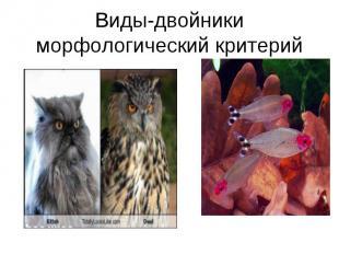 Виды-двойники морфологический критерий