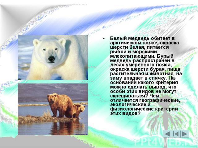 Белый медведь обитает в арктическом поясе, окраска шерсти белая, питается рыбой и морскими млекопитающими. Бурый медведь распространен в лесах умеренного пояса, окраска шерсти бурая, пища растительная и животная, на зиму впадает в спячку. На основан…