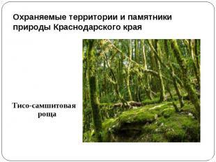 Охраняемые территории и памятники природы Краснодарского края Тисо-самшитовая ро