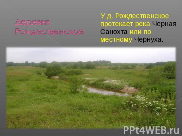 Деревня Рождественское У д. Рождественское протекает река Черная Санохта или по местному Чернуха.