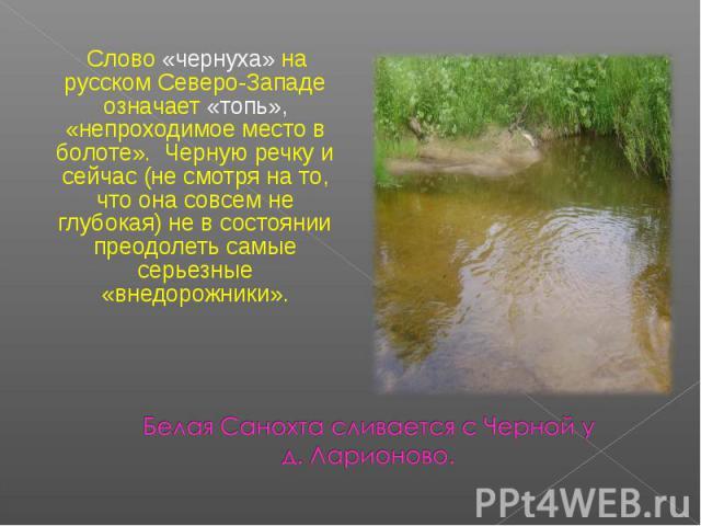 Слово «чернуха» на русском Северо-Западе означает «топь», «непроходимое место в болоте». Черную речку и сейчас (не смотря на то, что она совсем не глубокая) не в состоянии преодолеть самые серьезные «внедорожники». Белая Санохта сливается с Черной у…