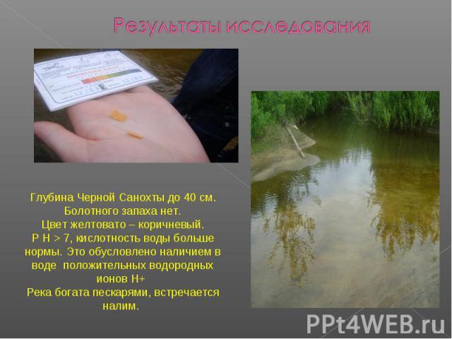 Результаты исследованияГлубина Черной Санохты до 40 см. Болотного запаха нет. Цвет желтовато – коричневый. Р Н >7, кислотность воды больше нормы. Это обусловлено наличием в воде положительных водородных ионов Н+ Река богата пескарями, встречается налим.