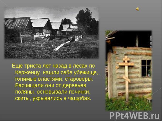 Еще триста лет назад в лесах по Керженцу нашли себе убежище, гонимые властями, староверы. Расчищали они от деревьев поляны, основывали починки, скиты, укрывались в чащобах.