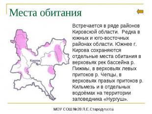 Места обитанияВстречается в ряде районов Кировской области. Редка в южных и юго-