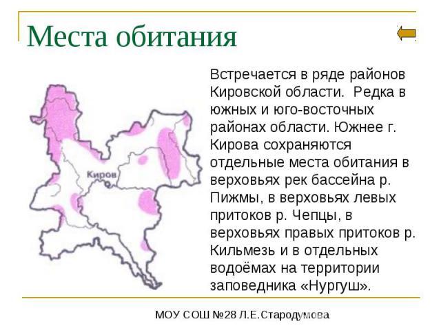 Места обитанияВстречается в ряде районов Кировской области. Редка в южных и юго-восточных районах области. Южнее г. Кирова сохраняются отдельные места обитания в верховьях рек бассейна р. Пижмы, в верховьях левых притоков р. Чепцы, в верховьях правы…