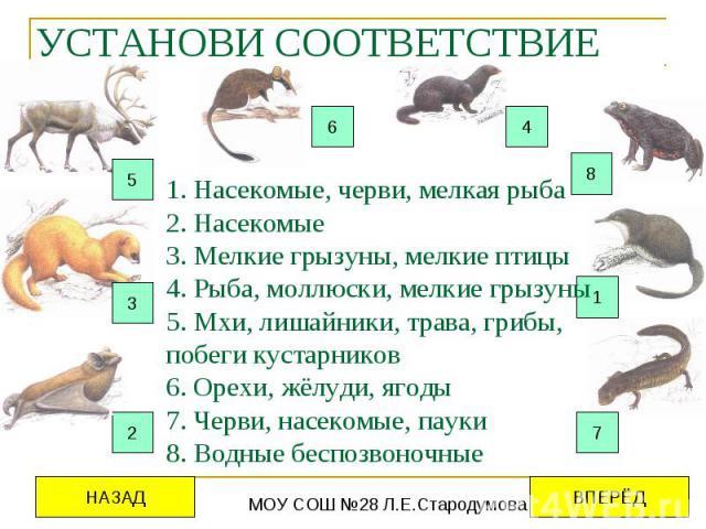 УСТАНОВИ СООТВЕТСТВИЕ 1. Насекомые, черви, мелкая рыба 2. Насекомые 3. Мелкие грызуны, мелкие птицы 4. Рыба, моллюски, мелкие грызуны 5. Мхи, лишайники, трава, грибы, побеги кустарников 6. Орехи, жёлуди, ягоды 7. Черви, насекомые, пауки 8. Водные бе…