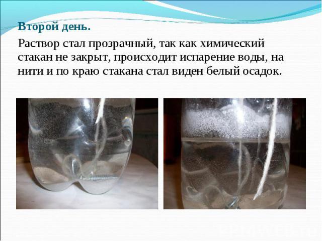 Второй день. Раствор стал прозрачный, так как химический стакан не закрыт, происходит испарение воды, на нити и по краю стакана стал виден белый осадок.