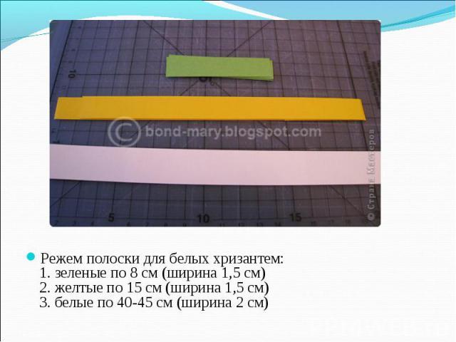 Режем полоски для белых хризантем: 1. зеленые по 8 см (ширина 1,5 см) 2. желтые по 15 см (ширина 1,5 см) 3. белые по 40-45 см (ширина 2 см)