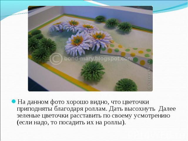 На данном фото хорошо видно, что цветочки приподняты благодаря роллам. Дать высохнуть Далее зеленые цветочки расставить по своему усмотрению (если надо, то посадить их на роллы).