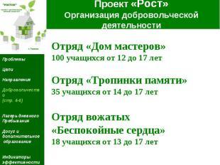 Проект «Рост» Организация добровольческой деятельности Отряд «Дом мастеров» 100