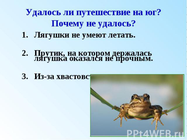 Удалось ли путешествие на юг? Почему не удалось?Лягушки не умеют летать. Прутик, на котором держалась лягушка оказался не прочным. Из-за хвастовства лягушки.