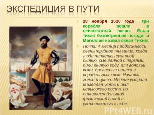 Экспедиция в пути28 ноября 1520 года три корабля вошли в неизвестный океан. Была