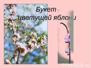 Букет цветущей яблони