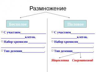 Размножение С участием________________ _______________клеток. Набор хромосом ___