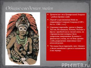 Общие сведения майя Тропические леса Центральной Америки – родина древних майя П