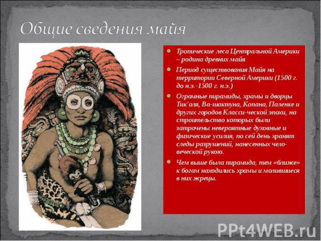 Общие сведения майя Тропические леса Центральной Америки – родина древних майя Период существования Майя на территории Северной Америки (1500 г. до н.э.-1500 г. н.э.) Огромные пирамиды, храмы и дворцы Тик'аля, Ва-шактуна, Копана, Паленке и других го…