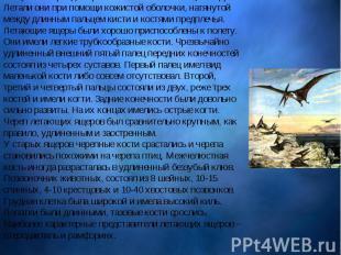 В юрский период впервые появляются летающие ящеры. Летали они при помощи к