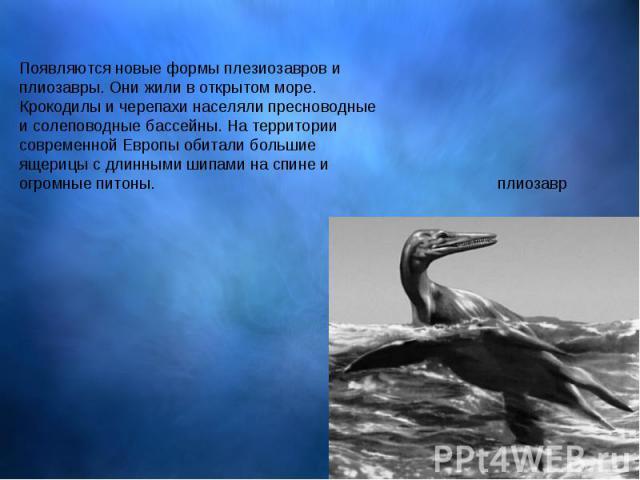 Появляются новые формы плезиозавров и плиозавры. Они жили в открытом море. Крокодилы и черепахи населяли пресноводные и солеповодные бассейны. На территории современной Европы обитали большие ящерицы с длинными шипами на спине и огромные питоны.