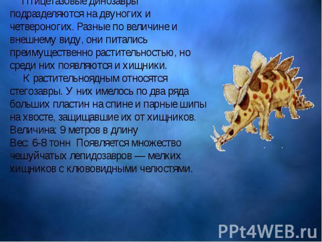 Птицетазовые динозавры подразделяются на двуногих и четвероногих. Разные по величине и внешнему виду, они питались преимущественно растительностью, но среди них появляются и хищники. К растительноядным относятся стегозавры. У них имелось п…