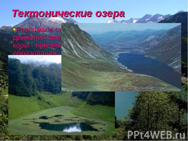Тектонические озера Разломы и складки движения земной коры - причина образования некоторых озер. За последние несколько миллионов лет его размеры постоянно менялись.