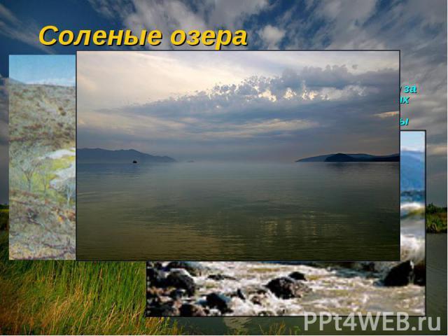 Соленые озера Большинство озер пресноводны и питаются за счет ручьев, рек, дождевых вод, но при ограниченном поступлении пресной воды минералы и почвы, смываемые с берегов, постепенно накапливаются. Пресная вода испаряется, а в озере остается богаты…