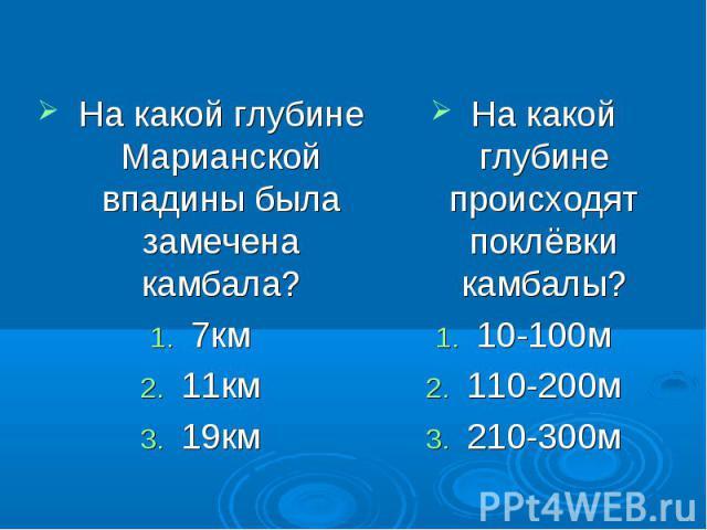 На какой глубине Марианской впадины была замечена камбала? 7км 11км 19км На какой глубине происходят поклёвки камбалы? 10-100м 110-200м 210-300м