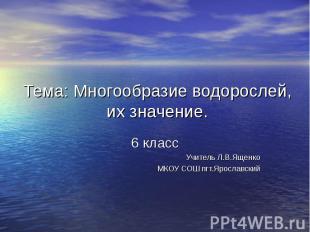 Тема: Многообразие водорослей, их значение. 6 класс Учитель Л.В.Ященко МКОУ СОШ
