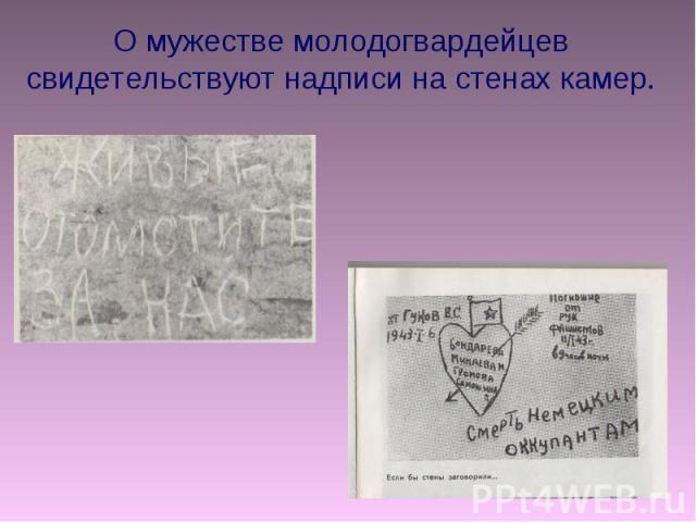О мужестве молодогвардейцев свидетельствуют надписи на стенах камер.