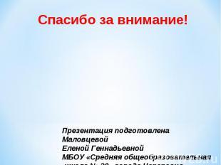 Спасибо за внимание! Презентация подготовлена Маловцевой Еленой Геннадьевной МБО
