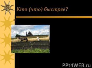 Кто (что) быстрее? 6 соток земли: вспашет лошадь или человек.