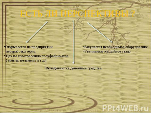 ЕСТЬ ЛИ ПЕРСПЕКТИВЫ ?Открывается на предприятии переработка зерна Цех по изготовлению полуфабрикатов ( манты, пельмени и т.д.) Вкладываются денежные средства Закупается необходимое оборудование Увеличивается дойное стадо