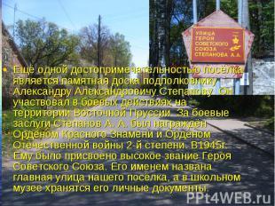 Ещё одной достопримечательностью посёлка является памятная доска подполковнику А