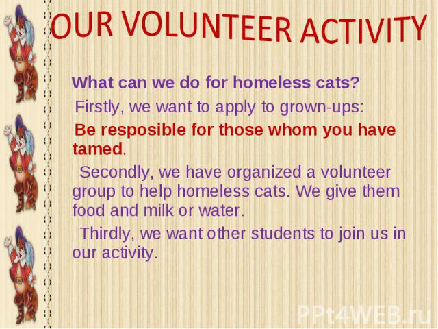 OUR VOLUNTEER ACTIVITY What can we do for homeless cats? Firstly, we want to apply to grown-ups: Be resposible for those whom you have tamed. Secondly, we have organized a volunteer group to help homeless cats. We give them food and milk or water. T…