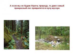 А если мы не будем беречь природу, то даже самый прекрасный лес превратится в ку