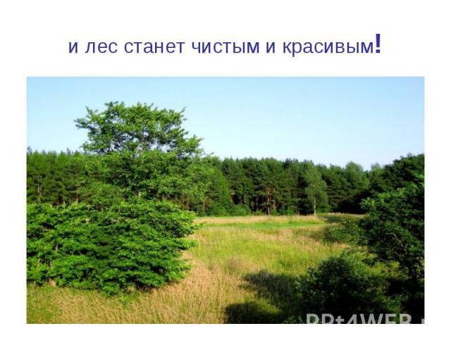и лес станет чистым и красивым!