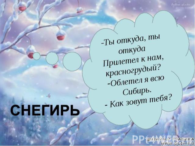 -Ты откуда, ты откуда Прилетел к нам, красногрудый? Облетел я всю Сибирь. Как зовут тебя?